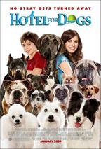 בית מלון לכלבים