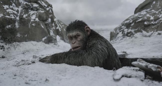 """""""כוכב הקופים: המלחמה""""."""