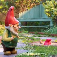 עולמם הסודי של גמדי הגינה