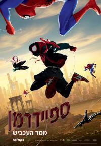 ספיידרמן: מימד העכביש - פוסטר