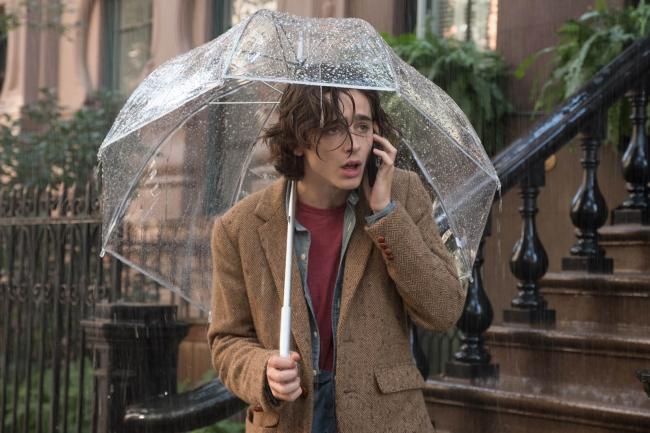 """""""יום גשום בניו יורק"""". טימותי שאלאמה."""