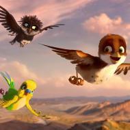לעוף על אפריקה