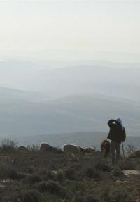 במדבר: דיפטיך תיעודי - פוסטר