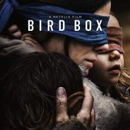 קופסת הציפורים