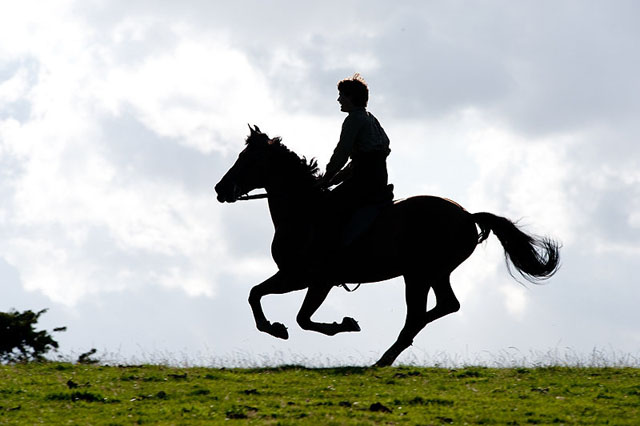 """""""סוס מלחמה"""". ג'רמי אירווין."""