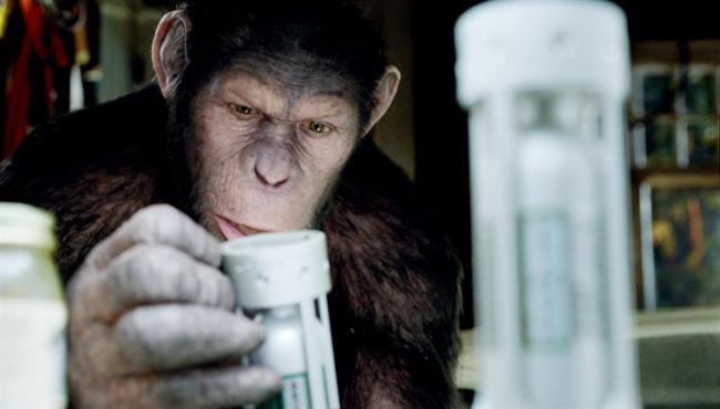 """""""כוכב הקופים: המרד""""."""