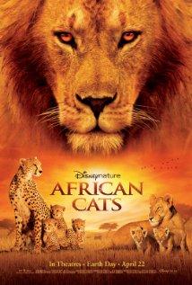 חתולים אפריקאים
