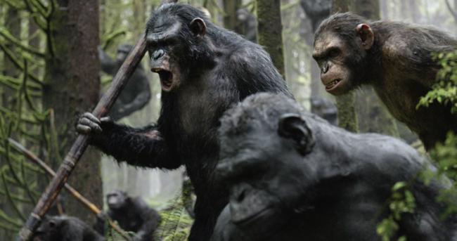 """""""כוכב הקופים: השחר""""."""