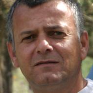 מיקי רבינוביץ'