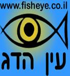תמונה של צוות עין הדג